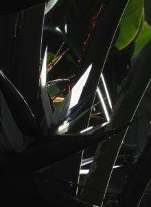 Riesen Strelitzie Bluete weiss Strelitzia nicolai 01