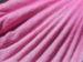 Zurück zum kompletten Bilderset Roseneibisch Blüte pink Hibiscus moscheutos